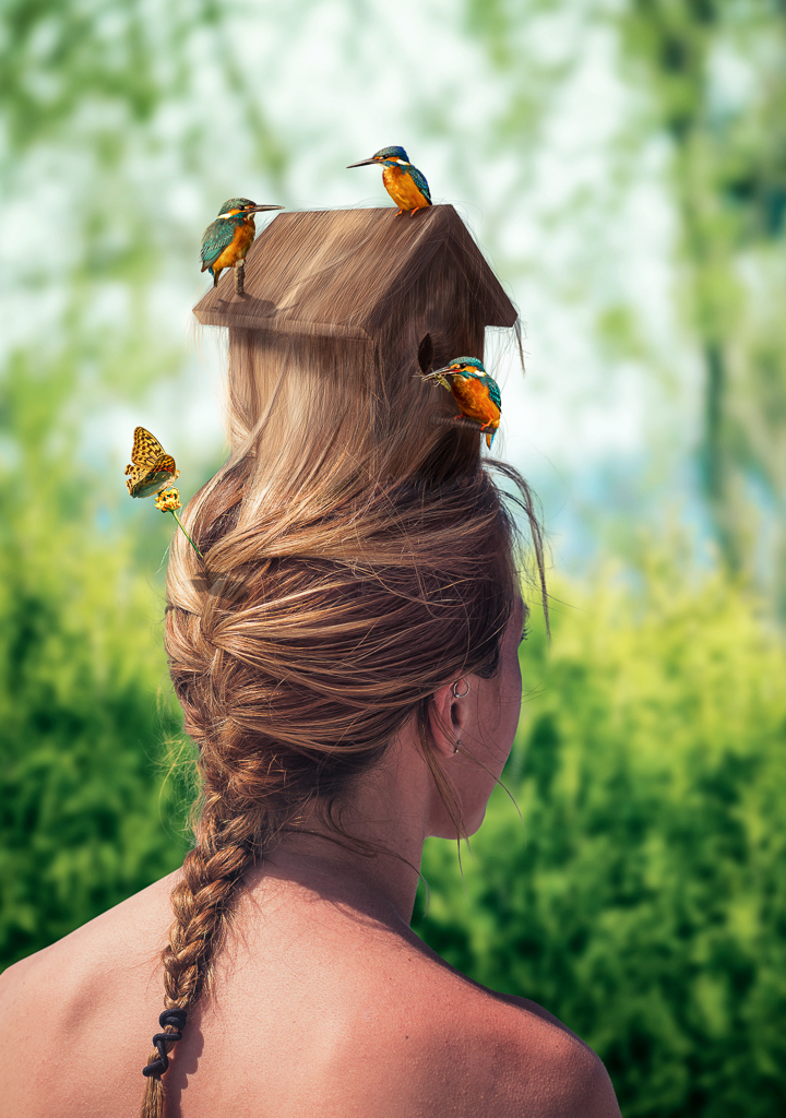 birdhouse-hairstyle