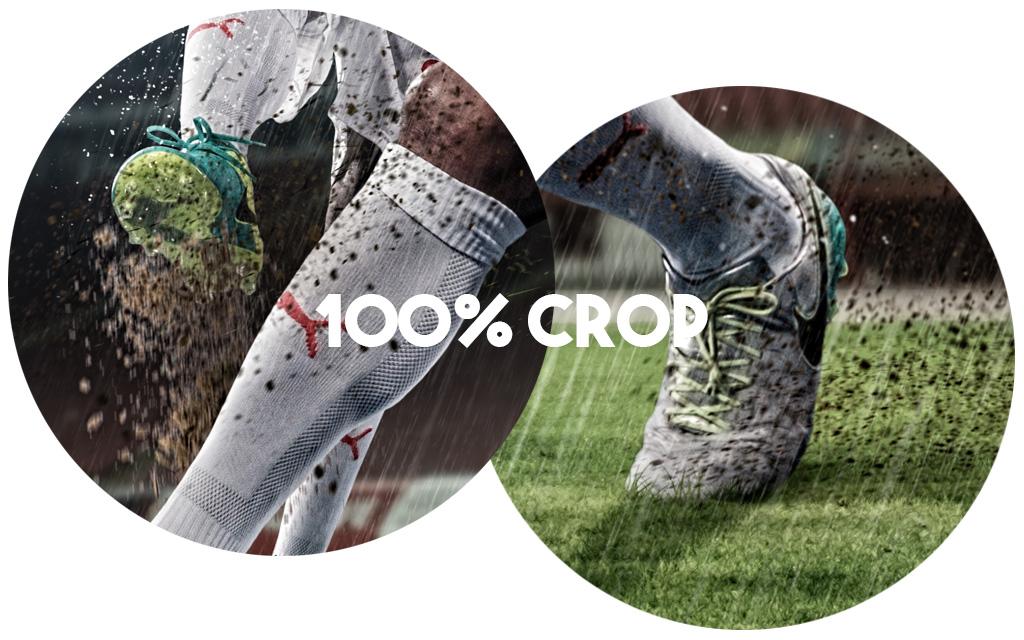 100 crop