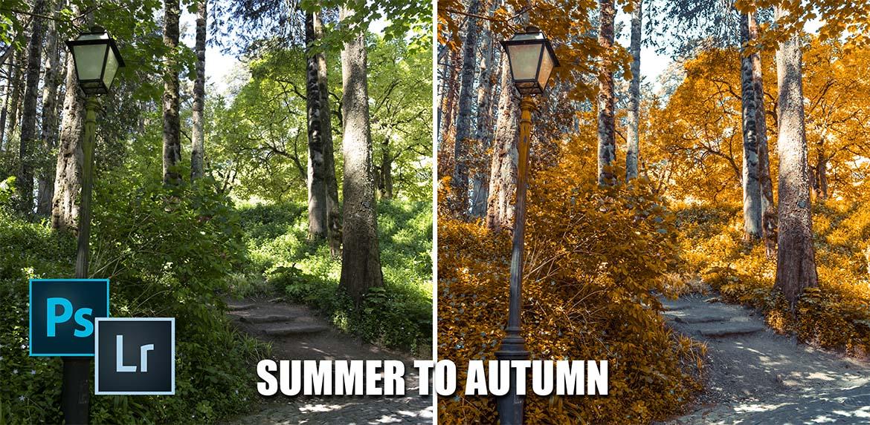 Summer to Autumn nsp