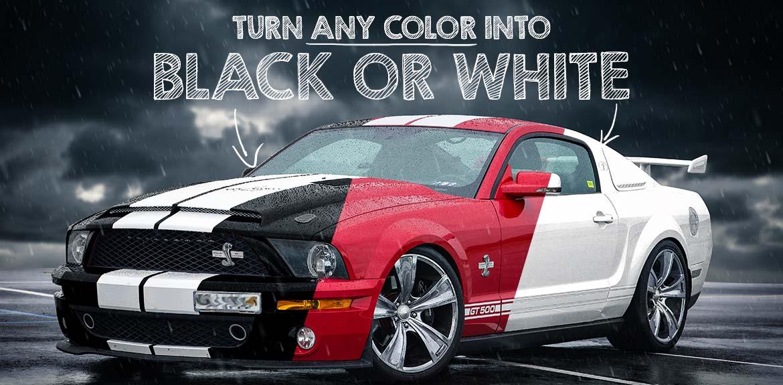 Black and white nsp