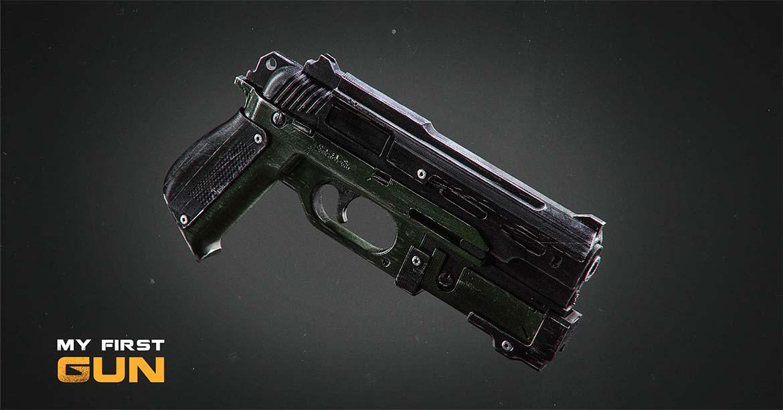Gun nsp